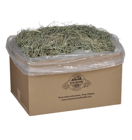 Oxbow Oxbow Orchard Grass Hay 25lb Box