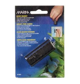 Marina Marina Small Algae Magnet