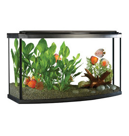 Fluval Fluval Premium Aquarium Kit with LED - 45 Bow - 170 L (45 US Gal)