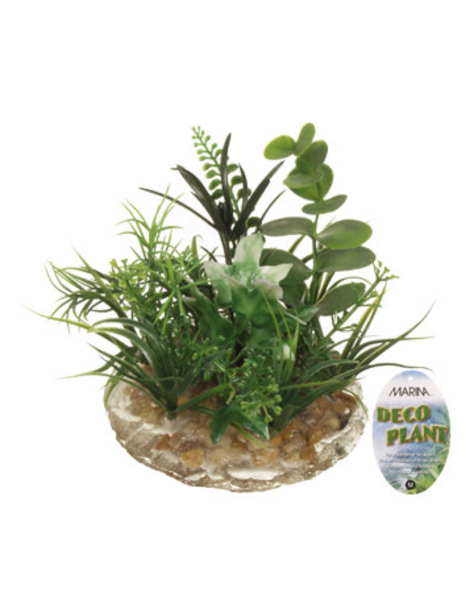 Marina Marina Deco Plant Ornament - Medium - 8.9 cm (3.5 in)