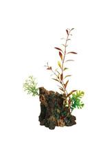 Marina Marina Deco-Wood Ornament - Medium