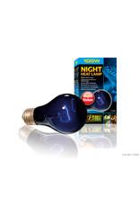 Exo Terra Night Heat Lamp - 100 W