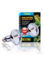 Exo Terra Halogen Basking Spot 75W
