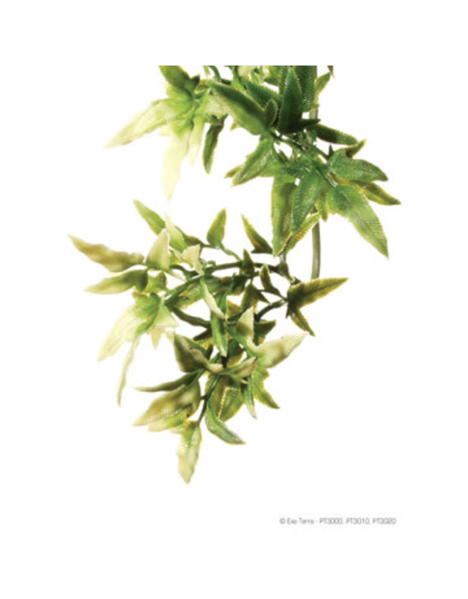Exo Terra Jungle Plant Croton Large