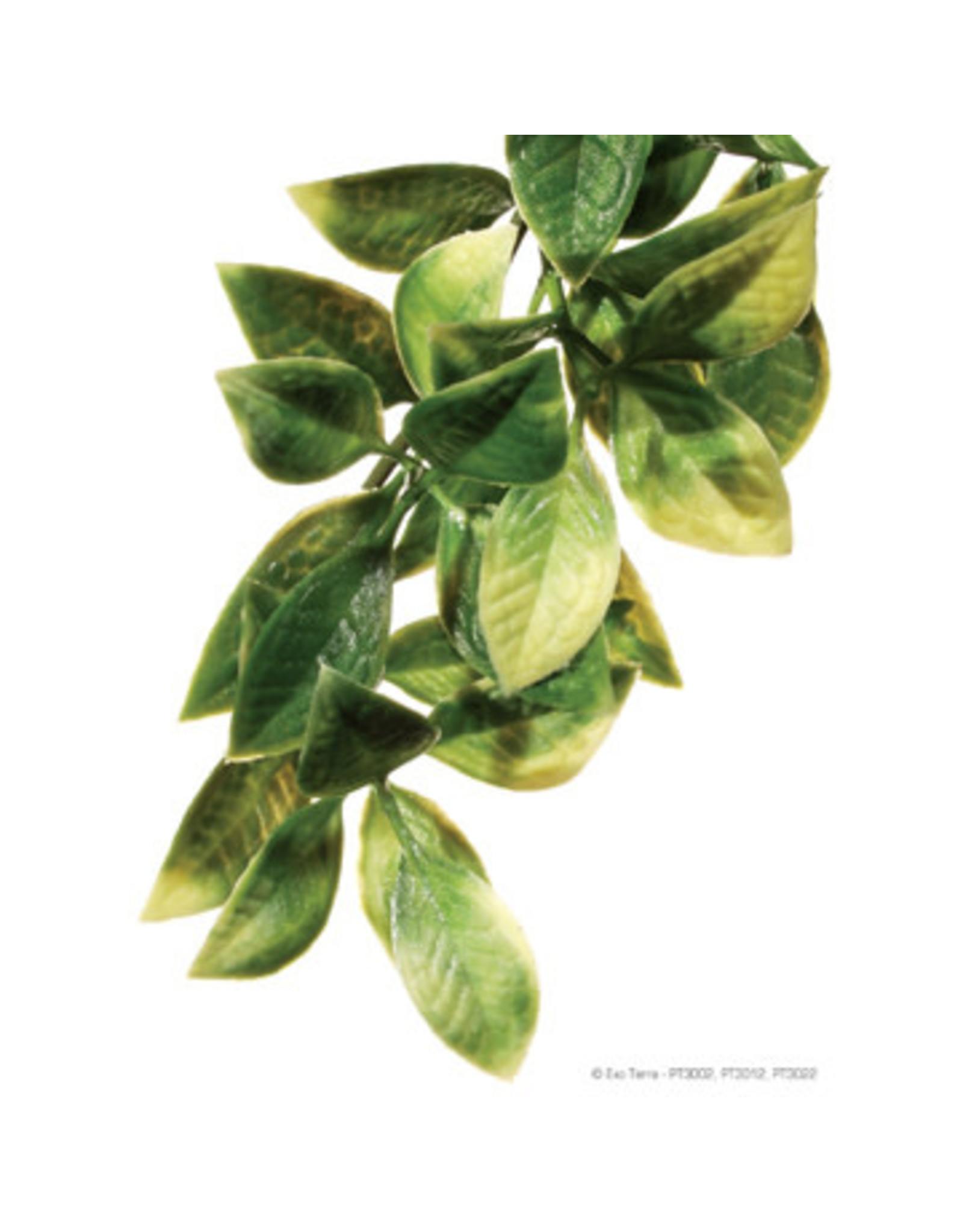 Exo Terra Jungle Plant Mandarin Large