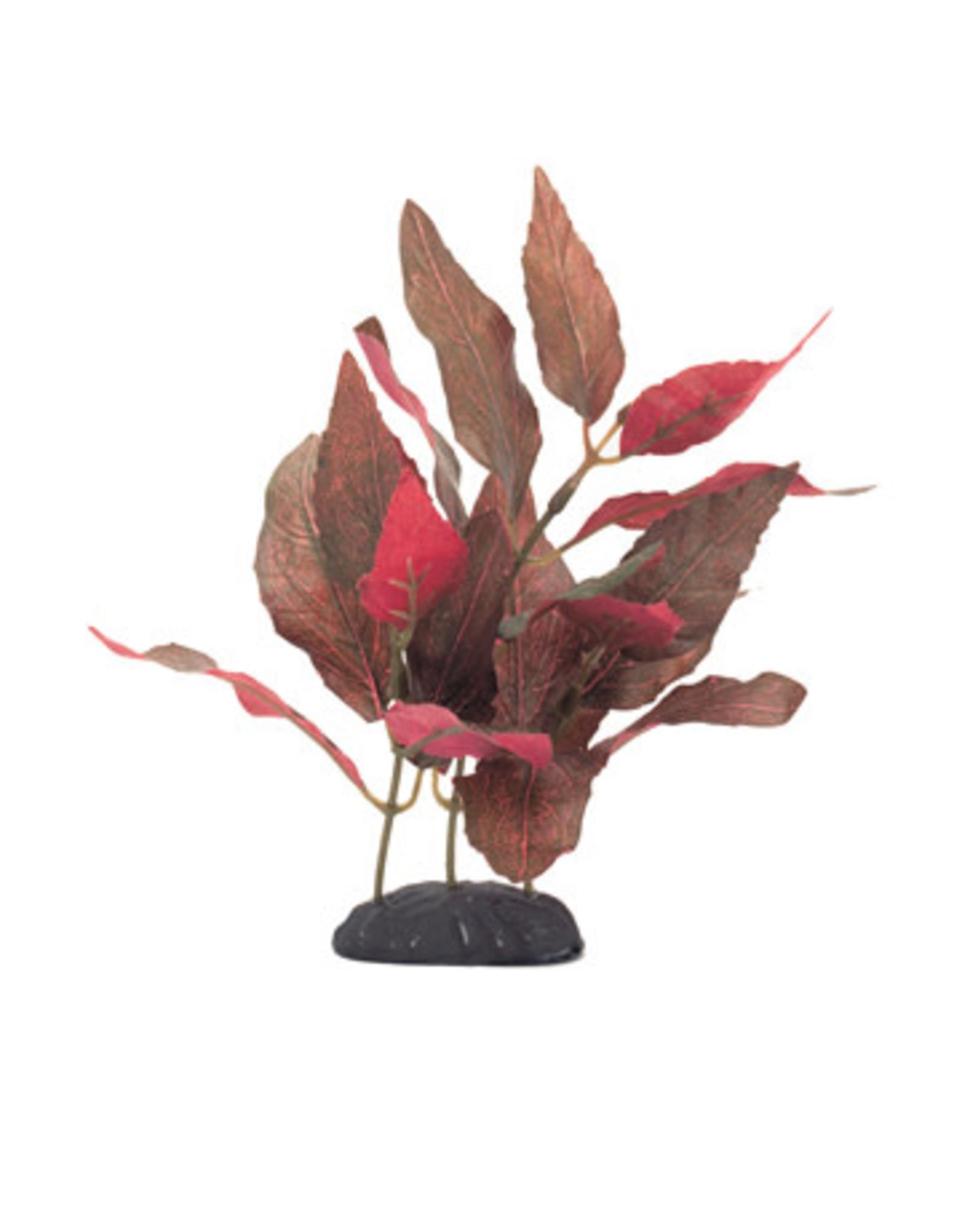 "Marina Marina EcoScaper Alternanthera Cardinalis Silk Plant - 20 cm (8"")"