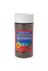 San Francisco San Francisco Bay Freeze Dried Bloodworms, .25 oz (7 g)