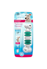 All for Paws Sparkle Self Brushing Bone with Peanut Butter Toothpaste