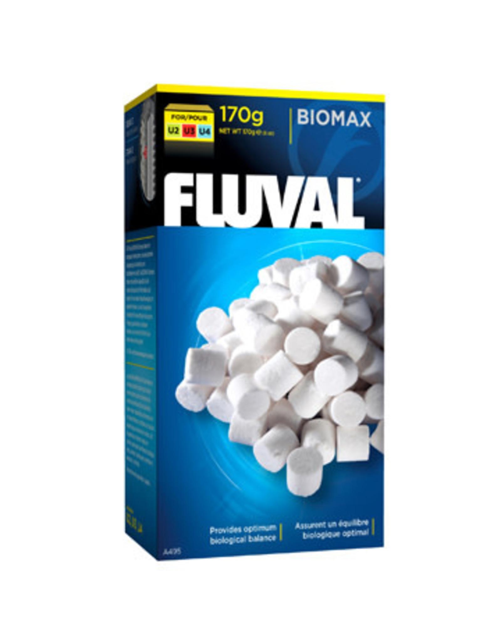 Fluval Fluval Underwater Filter BioMax - 110g