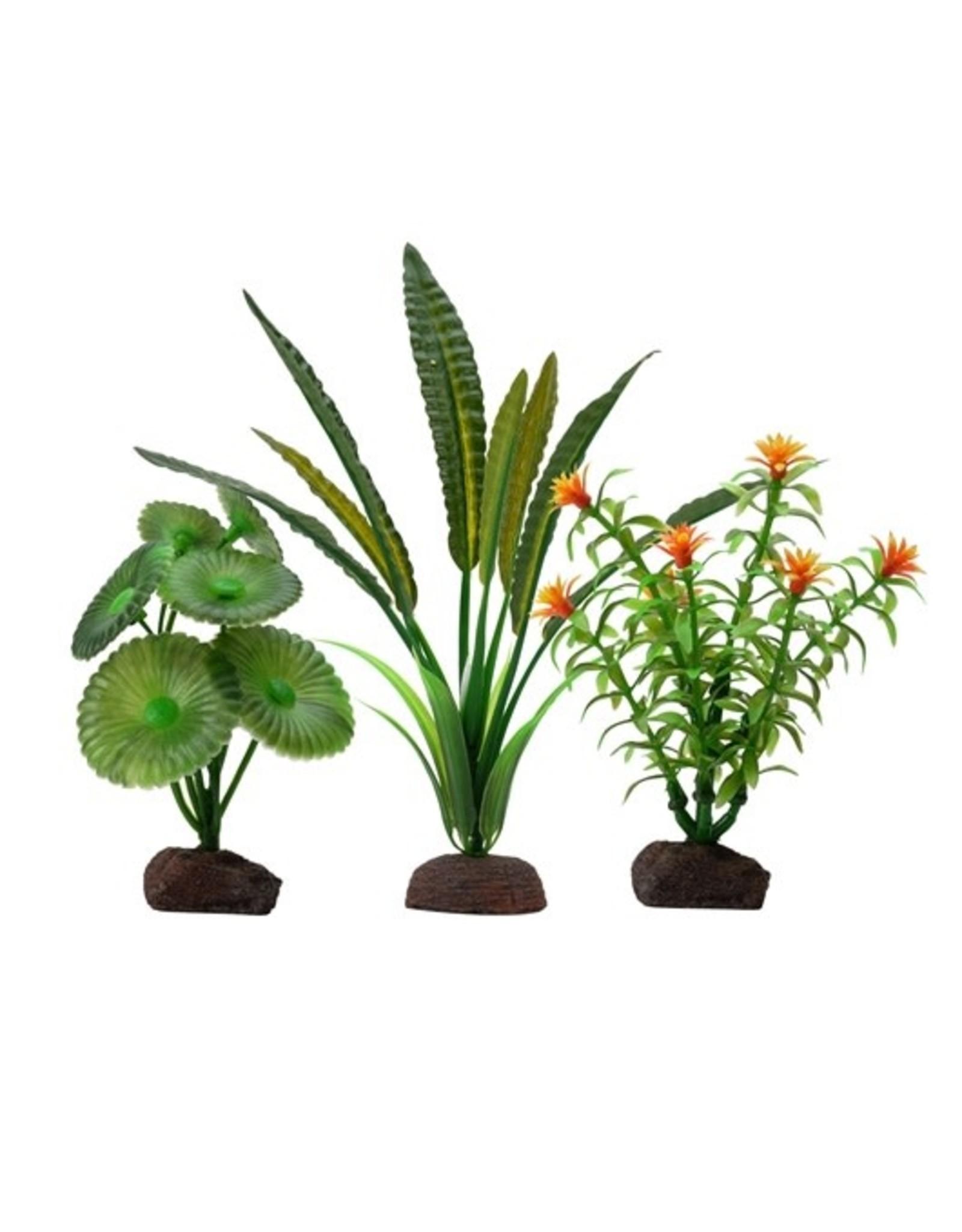 "Fluval Fluval Elodea Plant 3 Plant Set, 4-8"""