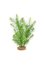 """Fluval Fluval Green Myriophyllum Plant, 10"""""""