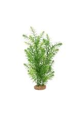 """Fluval Fluval Green Myriophyllum Plant, 14"""""""