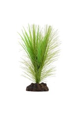 Fluval Fluval Green Parrot's Feather/Valisneria Plant, 5""
