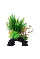 """Fluval Fluval Ludwigia/Sagittarius Plant, 8"""""""