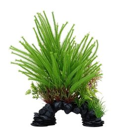 "Fluval Fluval Princess Pine Plant, 10"""