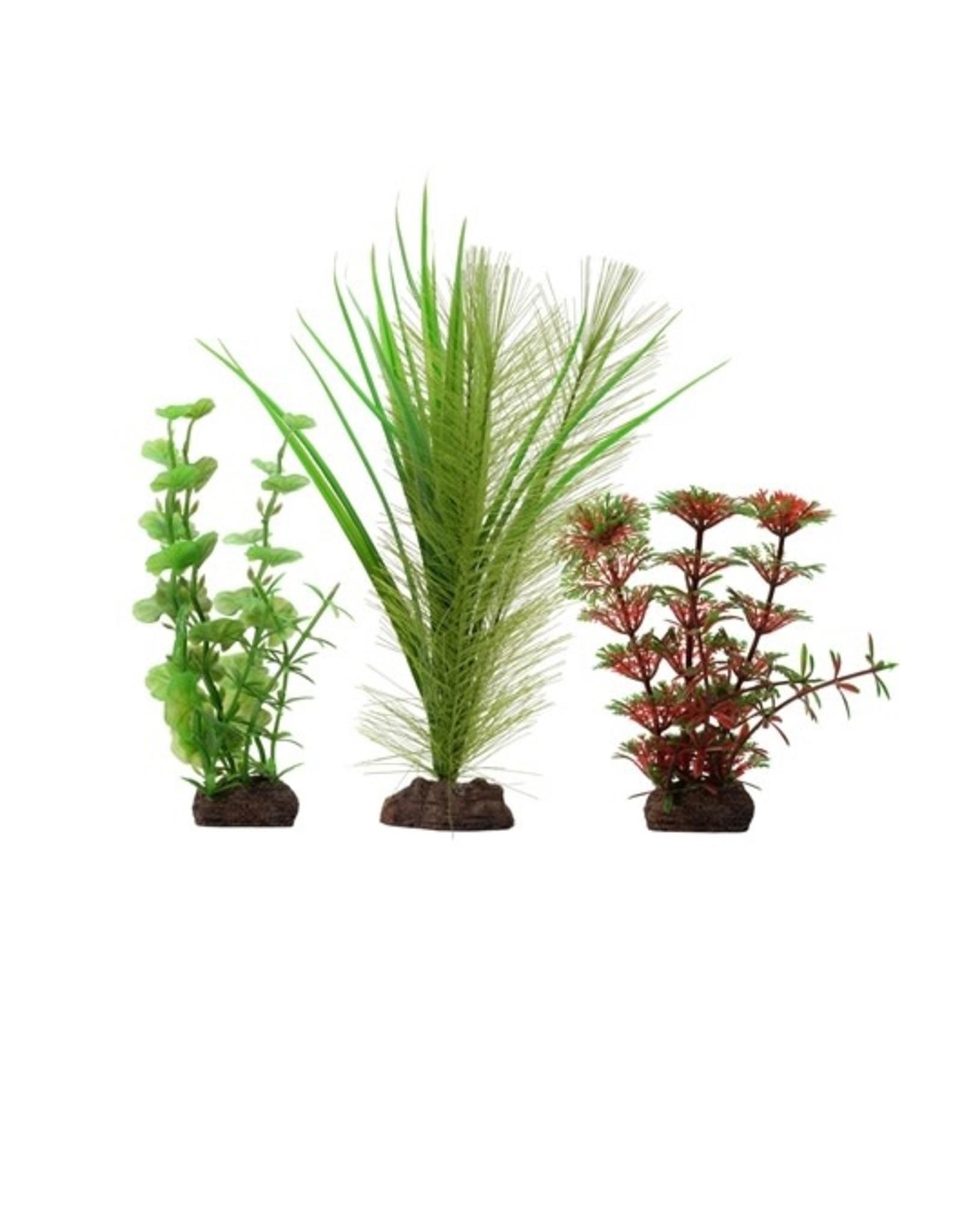 """Fluval Fluval Red Limnophila 3 Plant Set, 4-8"""""""