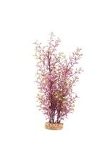 "Fluval Fluval Red Ludwigia Plant 14"""