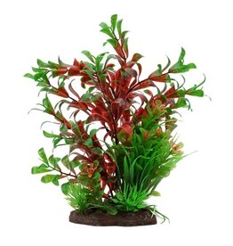 "Fluval Fluval Red Ludwigia/Dwarf Sagittarius Plant, 8"""