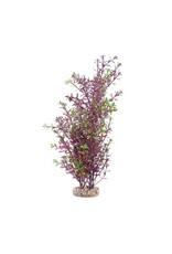 """Fluval Fluval Red Rotala Plant, 10"""""""