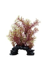 "Fluval Fluval Red/Green Foxtail Plant, 8"""