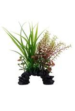 """Fluval Fluval Sagittarius/Rotala Plant, 8"""""""