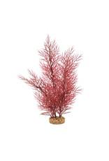 """Fluval Fluval Scarlet Eichornea Plant, 14"""""""