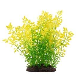 """Fluval Fluval Sunrise Water Violet Plant, 8"""""""