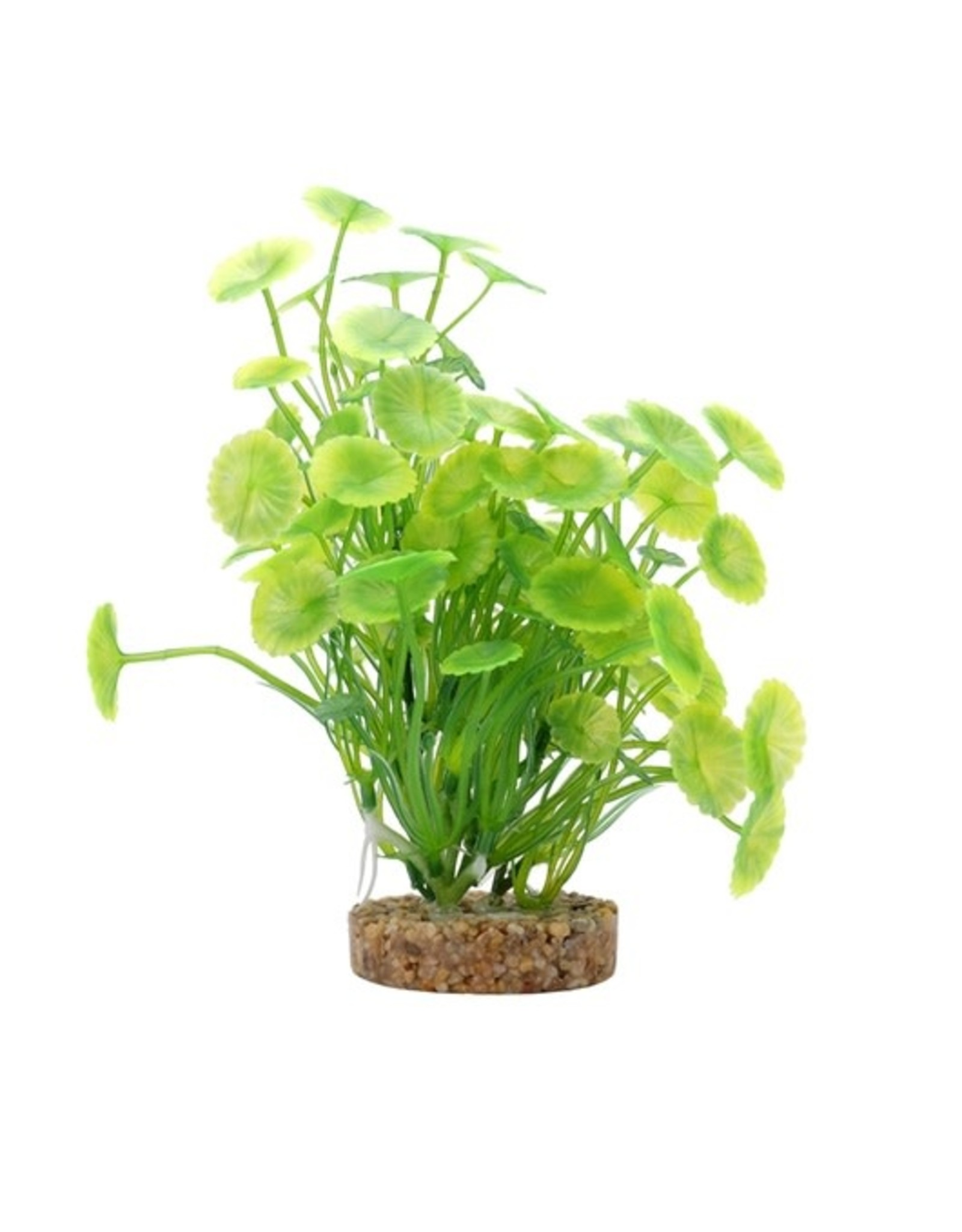 "Fluval Fluval Yellow-Green Lysimachia Plant, 8"""