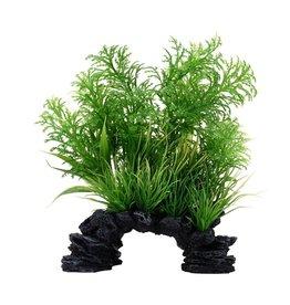 "Fluval Fluval White-Tipped Hottonia Plant, 8"""