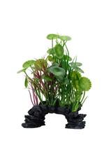 """Fluval Fluval Green Lysimachia Plant, 8"""""""