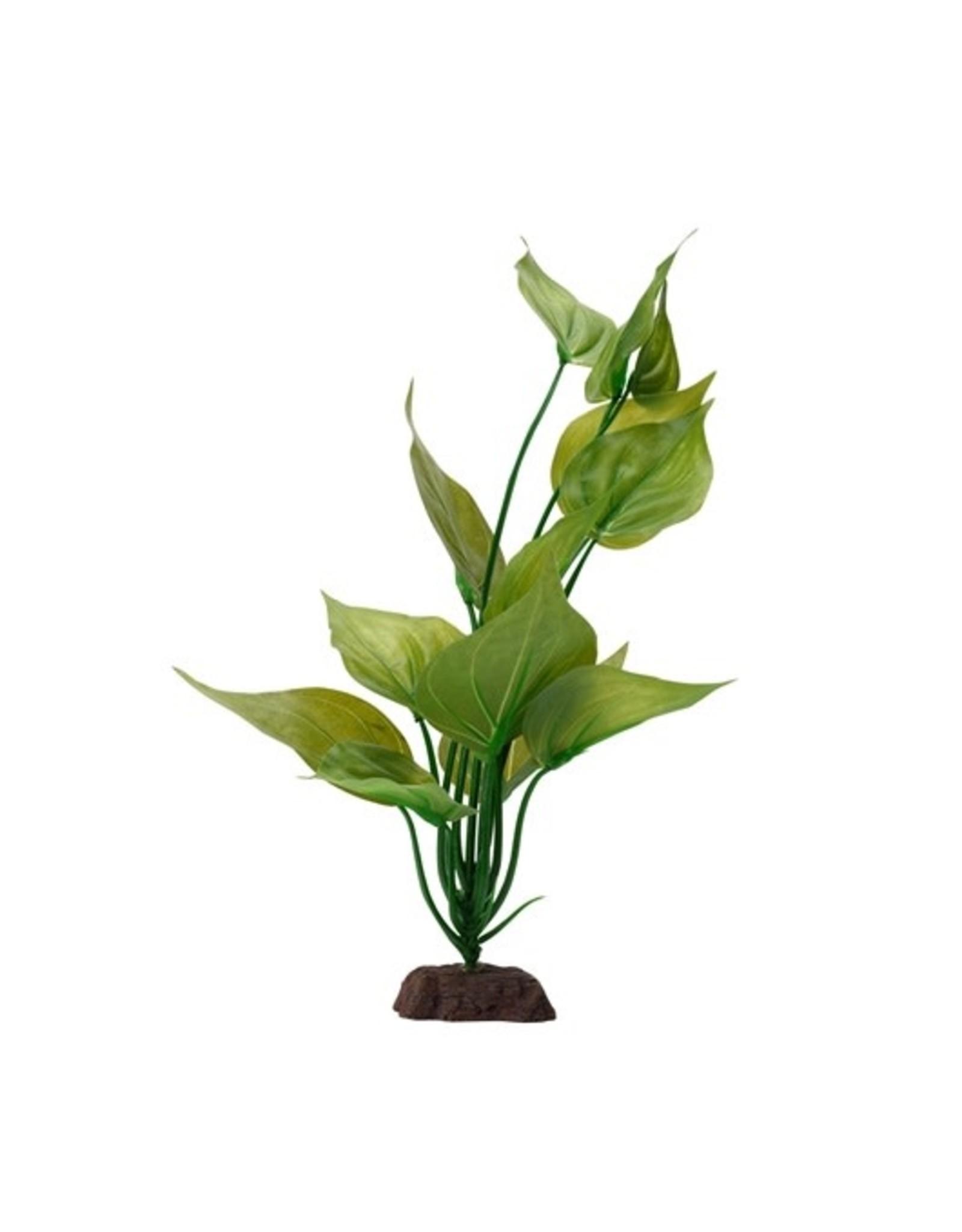 """Fluval Fluval Varigated Lizard's Tail Plant, 12"""""""