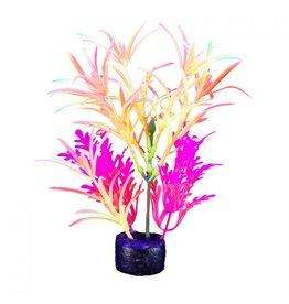 """Marina Marina iGlo Plant - 7.5"""" - Yellow/Purple"""