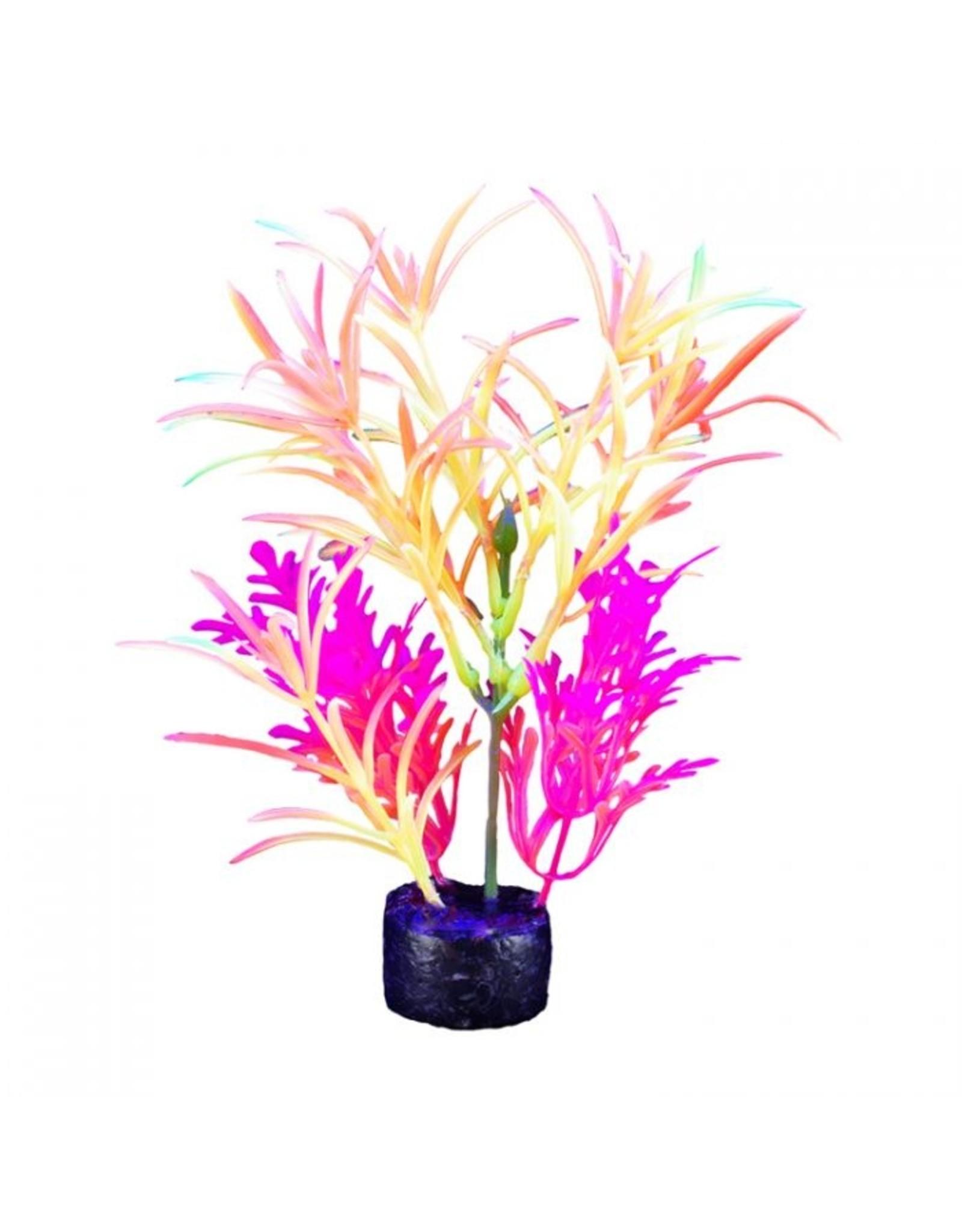 "Marina Marina iGlo Plant - 7.5"" - Orange/Yellow/Pink"