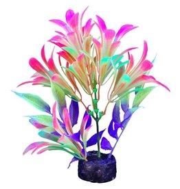 """Marina Marina iGlo Plant - 5.5"""" - Red/Green"""