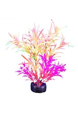 "Marina Marina iGlo Plant - 5.5"" - Orange/Yellow/Pink"