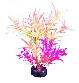"Marina Marina iGlo Plant - 5.5"" - Orange/Yellow/Pink"