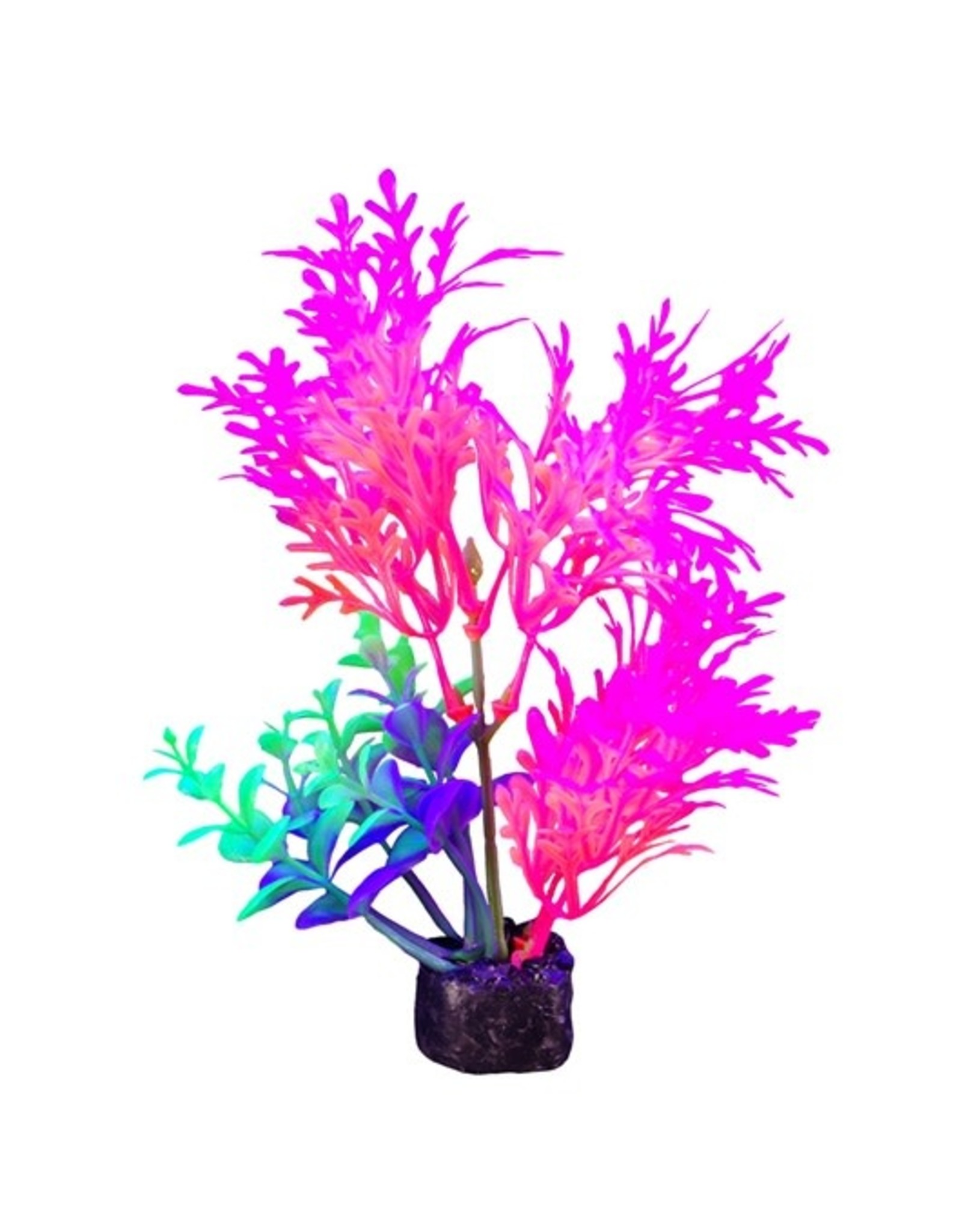 """Marina Marina iGlo Plant - 5.5"""" - Pink"""
