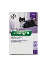 Bayer Advantage II - over 4kg, 4 doses