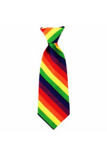 Huxley & Kent Long Tie - Pride - Medium