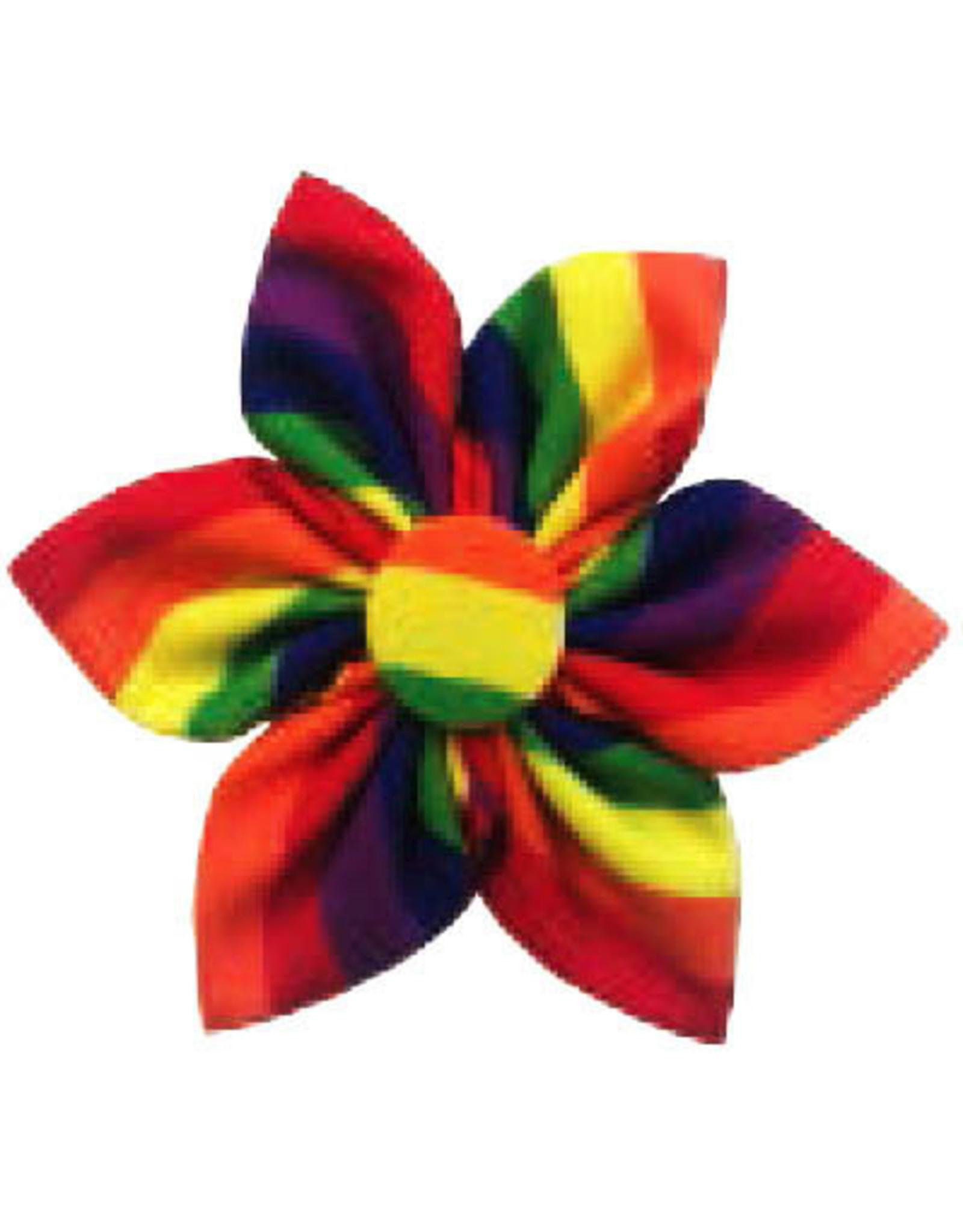 Huxley & Kent Pinwheel - Pride - Large