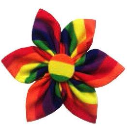 Huxley & Kent Pinwheel - Pride - Small