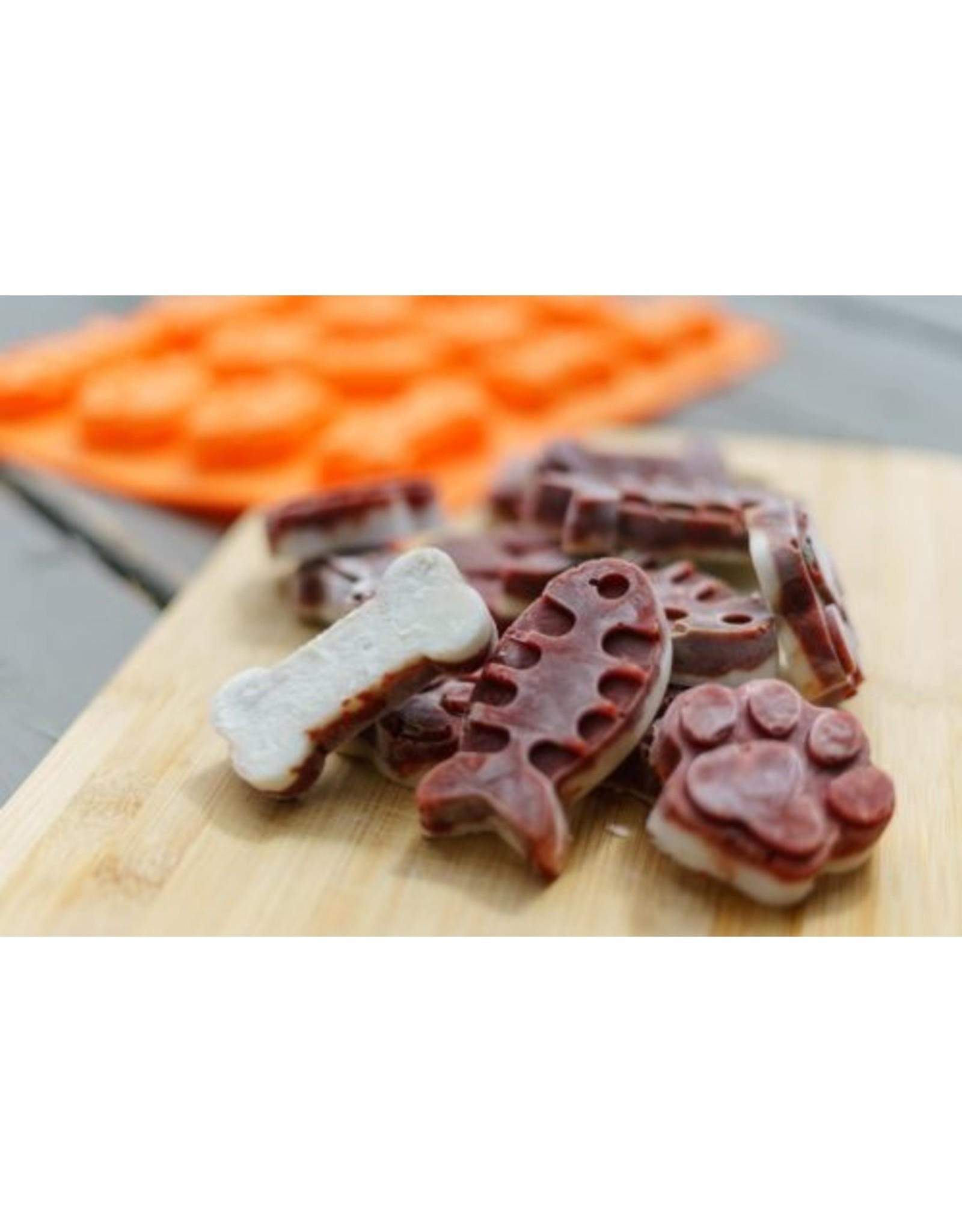Big Country Raw Treat Mold - Fish, Paw & Bone Shape