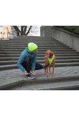 RC Pets Momentum Control Harness