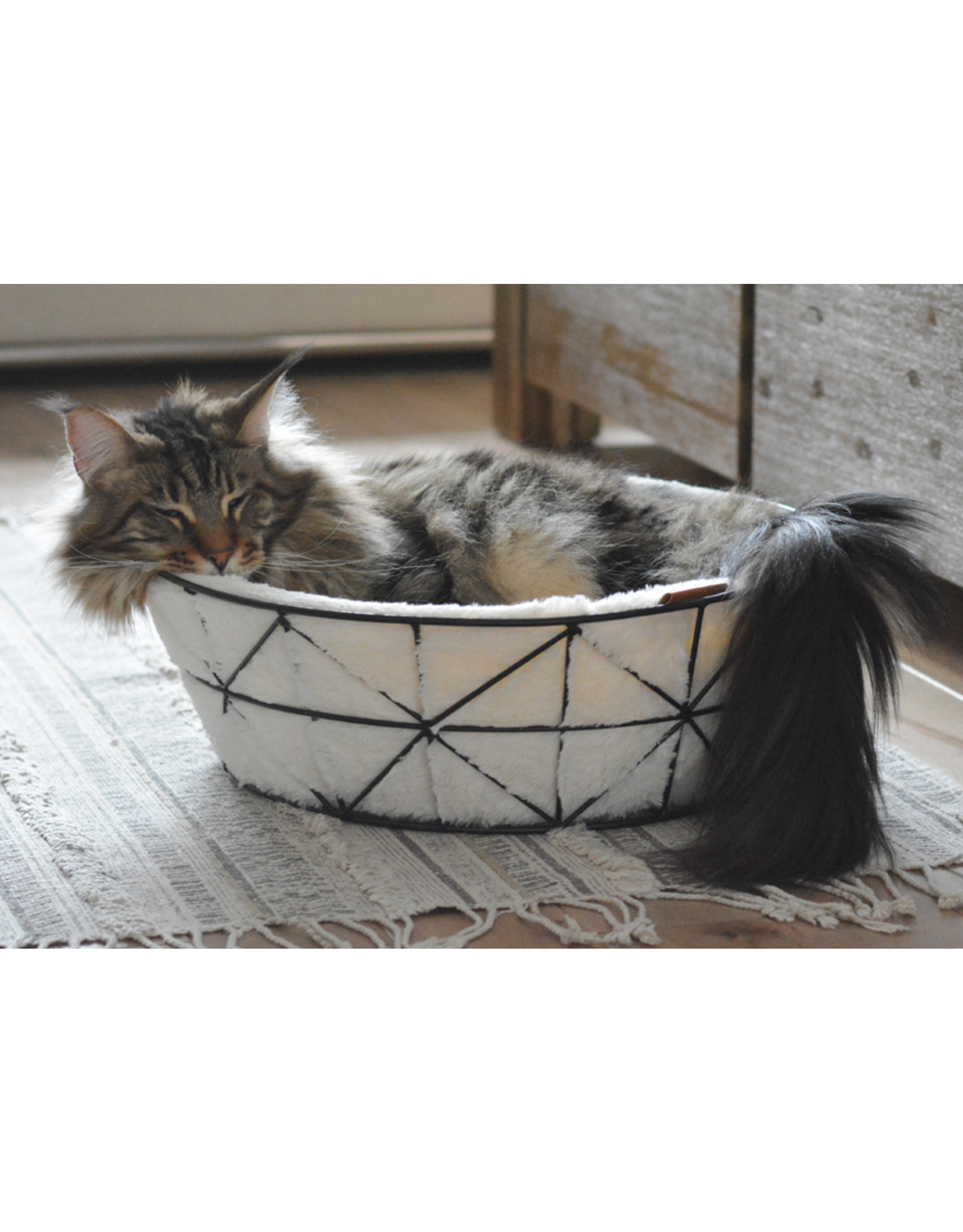 Be One Breed Be One Breed Metal Wire Basket with Foam Cushion