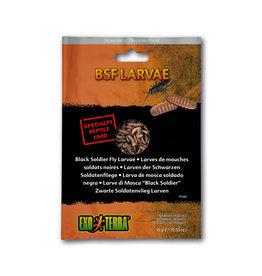 Exo Terra Exo Terra Reptile Food BSF Larvae 15g