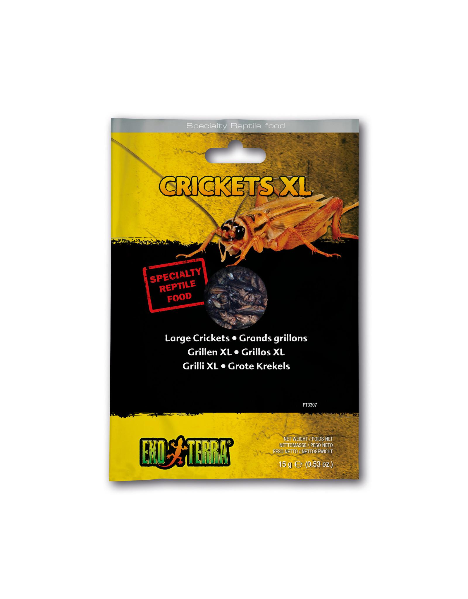 Exo Terra Exo Terra Reptile Food Crickets XL 15g