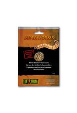 Exo Terra Exo Terra Reptile Food Superworms 15g
