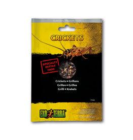 Exo Terra Exo Terra Reptile Food Crickets 15g