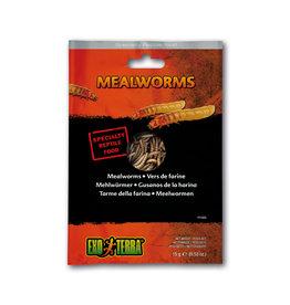 Exo Terra Exo Terra Reptile Food Mealworms 15g
