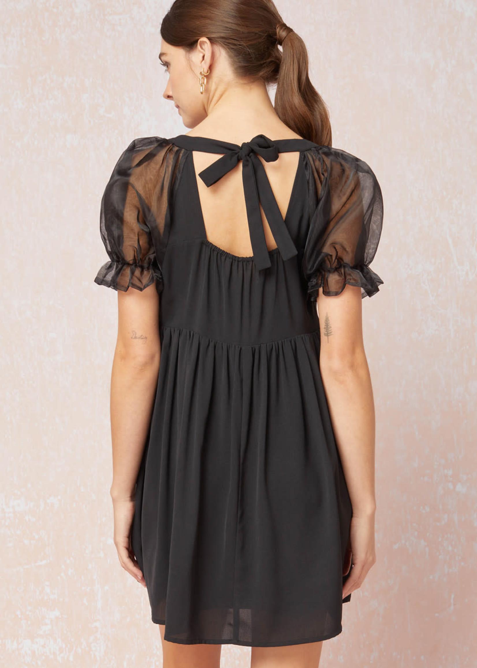 Sheer Delight Dress